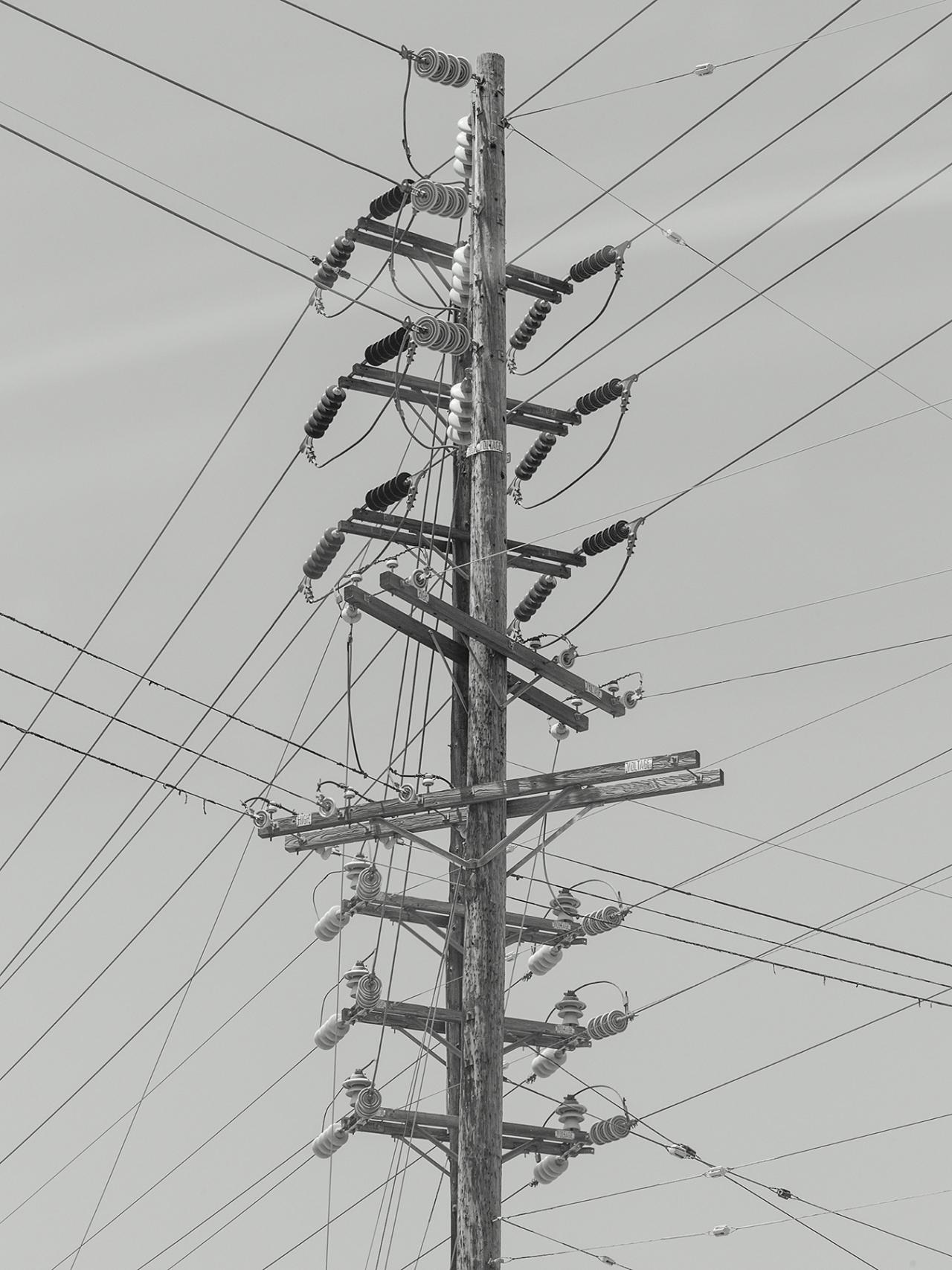 Télévision OL 1704 DG CUCUMBER (DG)